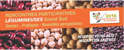 RENCONTRES PARTICIPATIVES LÉGUMINEUSES Grand Sud Savoirs - Pratiques - Nouvelles perspectives