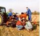 réparation tracteur